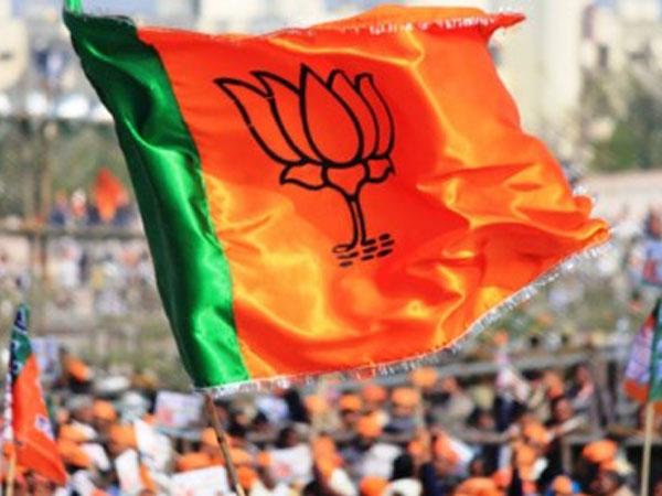 BJP-win